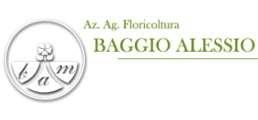 Logo Baggio