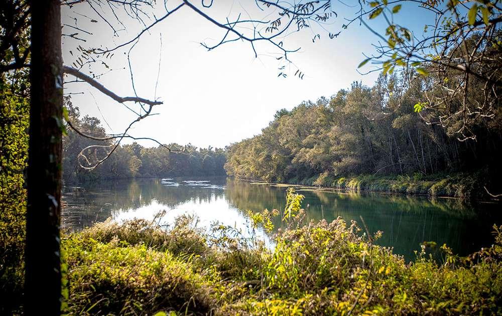 Area naturalistica del fiume Brenta